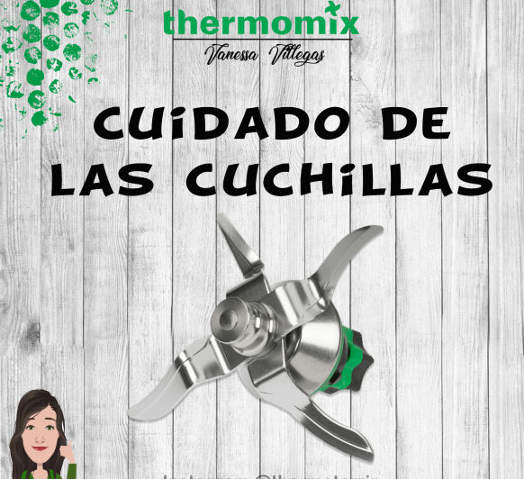 Consejos de Mantenimiento - cuchillas Thermomix® - usos - cambiar - sustituir - recomendaciones - duración - tips